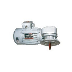 Gear Motor And Gearbox Gear Electric Motor Manufacturer