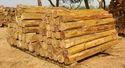 Teak Rough Square Logs