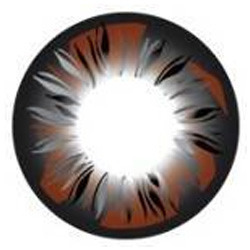 Feather Brown Color Contact Lens