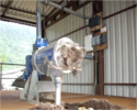 Slurry Drying Machine