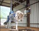 Slurry Drying Machine