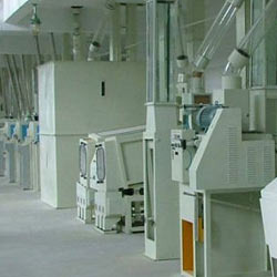 cotton seed processing plants