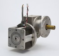 BLDC Motor with Worm Gearbox