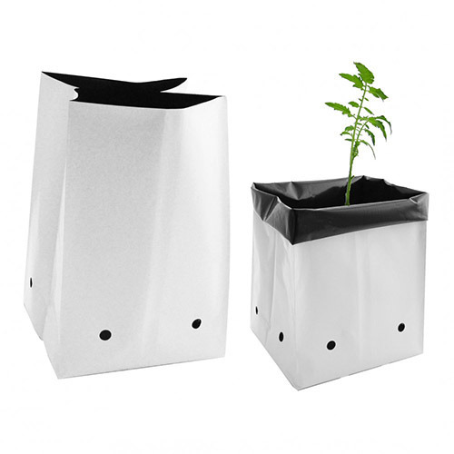 Grow Bag In Chennai Tamil Nadu Get Latest Price From Suppliers Of Plant