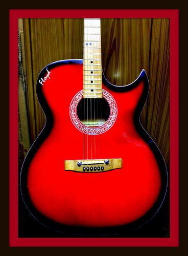 Floyd Guitar 265 Special Red