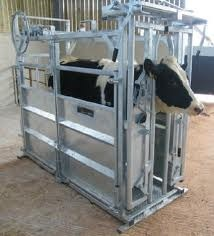 Cattle Crusher