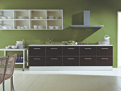 Wooden Modular Kitchen Cabinets
