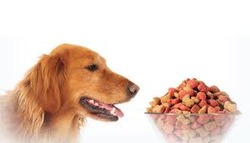 wet canned pet food additives