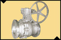 Butterfly Valves & Check Valve