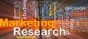 Market Research Translation Services