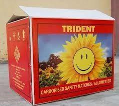 duplex cartoon boxes