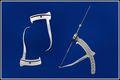 Anterior Cruciate Ligament Reconstruction