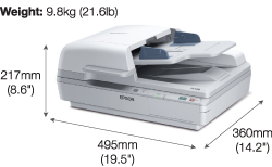 Epson Flatbed Document Scanner