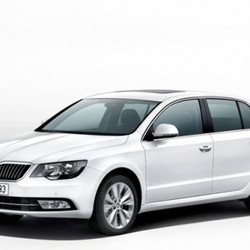Second Hand Car (Skoda)