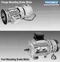 Pethe Brake Motors