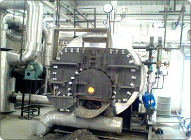 Multi Fuel Industrial Steam Boiler