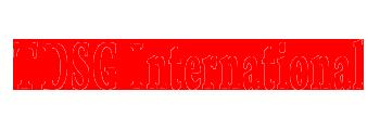 Tdsg International