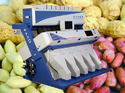 Peanuts Color Sorter Machine