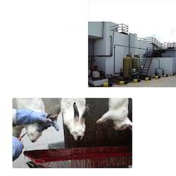 Wastewater Treatment Plant for Slaughter Houses