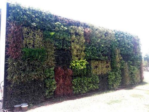 Live Vertical Garden