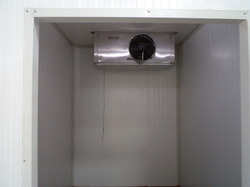 Curd Incubation Rooms with Chiller