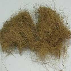 coco fiber natural
