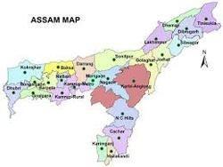 Pharma Franchise in Assam