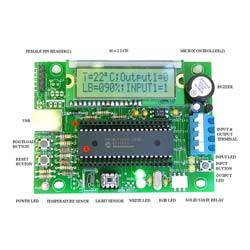 Micro Controller Based Systems