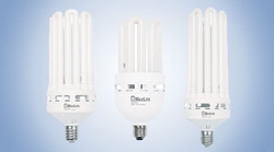 High Lumen CFL Bulbs