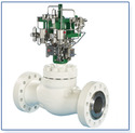 Cage Guided Control Valves