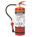 Lifeguard Foam Portable Fire Extinguisher