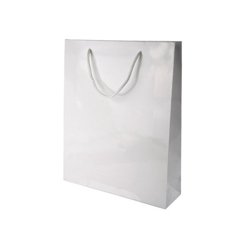 a390f5a26f85 Paper Carrier Bag at Best Price in India