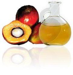 palm fruit oil