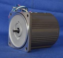 Panasonic Induction Motor
