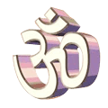Indian Vedic Services