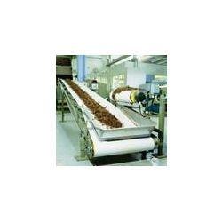 TobaccoConveyor Belts