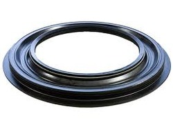Oil seal