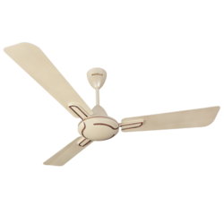 Atilla Ceiling Fan (Havells)
