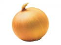 Golden Onion