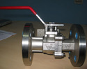 Side Entry Ball Valves