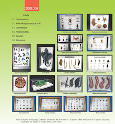 Biological Collection Sets