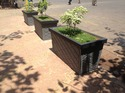 design cement planter