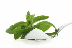Stevia White Powder in Bulk