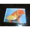 Acrylic Photo Paperweight