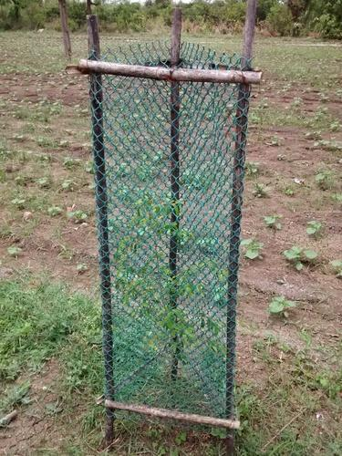 Tree Guard Zaliwala 5 feet
