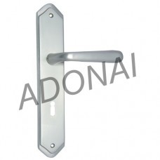 ahaz brass door handle with plate