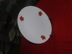 Unbreakable Polycarbonate Designer Full Plate