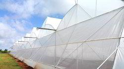 Ginegar Driplock Clear Greenhouse Covering Film