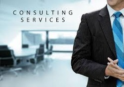 Consulting Project Management Services