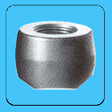 Threadolets (Forged Steel Outlet Fittings)